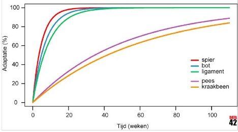 peesblessure en weefsel adaptatie