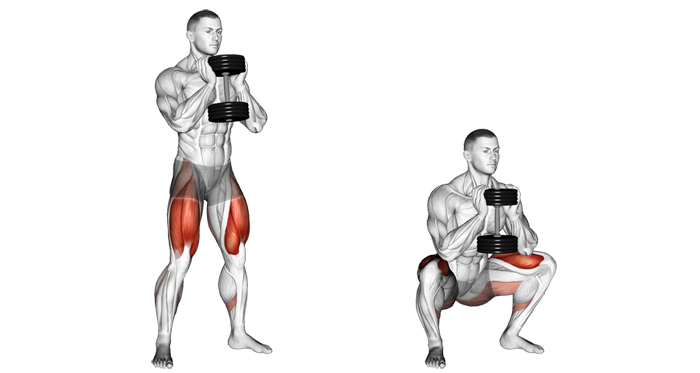 goblet squat crossfit